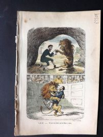 Cruikshank C1860 HCol Satire Print. Leo - Androcles and the Lion